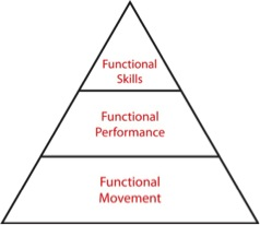 Going back to the basics: the importance of functional